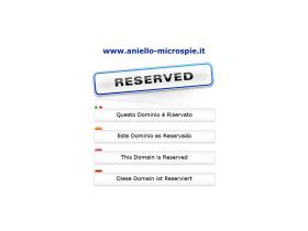 aniello-microspie.it