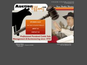auctioneffertz.com