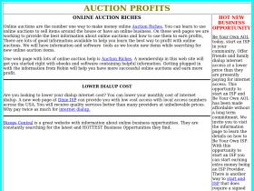 auctionprofits.net