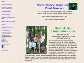 beautifulbamboo.com