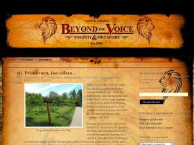 beyondthevoice.wordpress.com