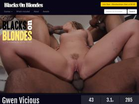 blackdickswhitechicks.com