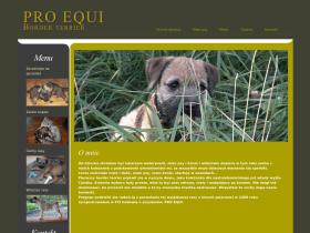 borderterrier.com.pl