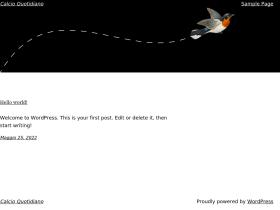 calcioquotidiano.it