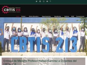 cbtis213.edu.mx