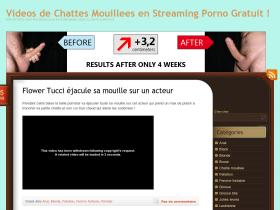 chatte-mouillee-video.com