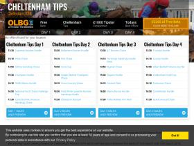 cheltenham-betting.co.uk