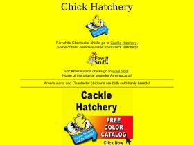 chickhatchery.com
