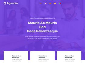 chihuahua-in-not.de