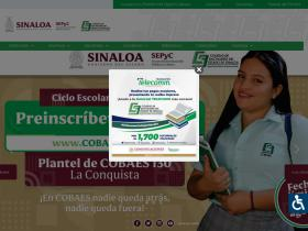 cobaes.edu.mx