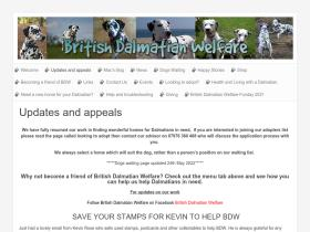 dalmatianwelfare.co.uk