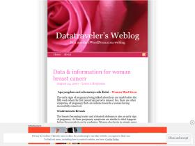 datatraveler.wordpress.com