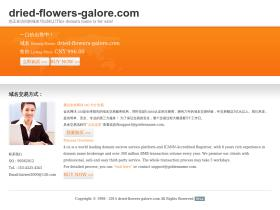 dried-flowers-galore.com