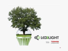 ecoleddlight.be