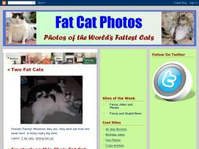 fat-cat-photos.blogspot.com