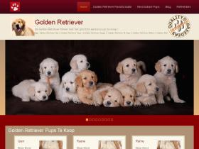 golden-retriever-online.nl