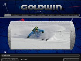 goldwin-russia.ru