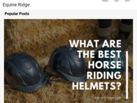 horse-angels.org