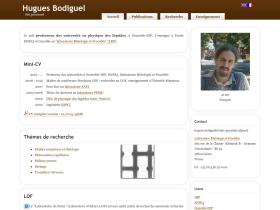hugues.bodiguel.free.fr