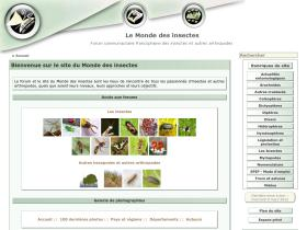 insecte.org