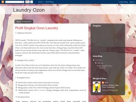 laundryozon.blogspot.com