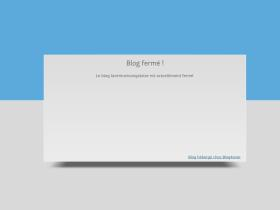 laventurecongolaise.blog4ever.com