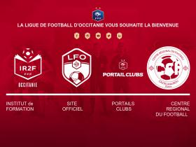 ligue-midi-pyrenees-foot.fff.fr