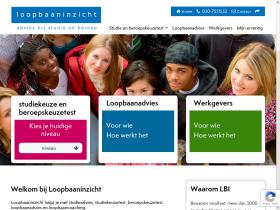 loopbaaninzicht.com