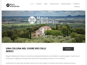 magiadibarbarano.it