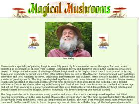 magical-mushrooms.co.uk