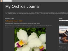 myorchidsjournal.blogspot.com