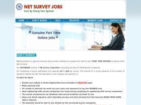 netsurveyjobs.com