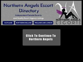 northern-angels.co.uk