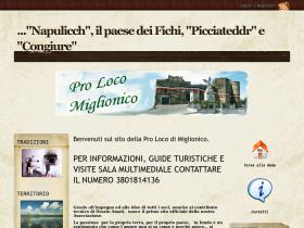 prolocomiglionico.it