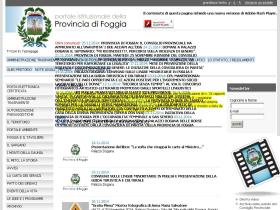 provincia.foggia.it