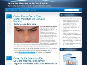 quitarmanchasdelacararapido.com