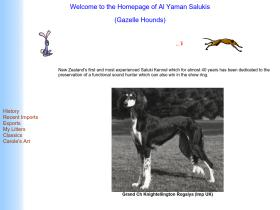 saluki.co.nz