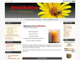 smellsonice.co.uk