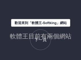softking.com.tw