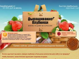 strawberry-money.ru