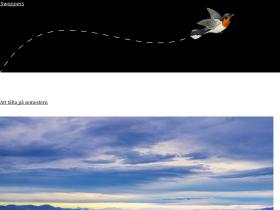 swoppers.se