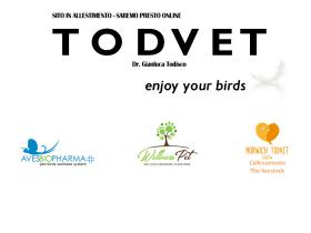 todvet.it