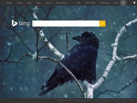 ts1.mm.bing.net