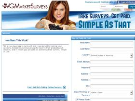 vgmarketsurveys.com