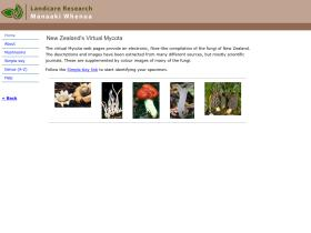 virtualmycota.landcareresearch.co.nz