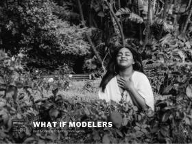 whatifmodelers.com