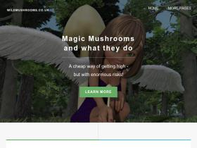 wildmushrooms.co.uk