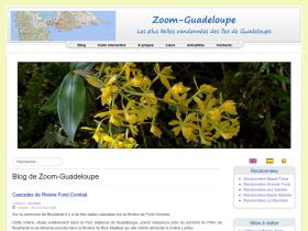 zoom-guadeloupe.fr