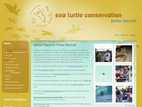 acehturtleconservation.org