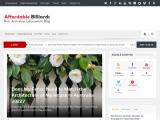 affordablebilliards.com.au